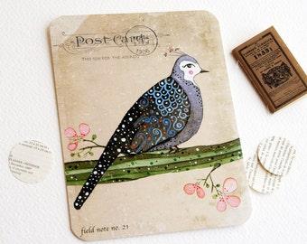 Bashful Beauty - Postcard Set