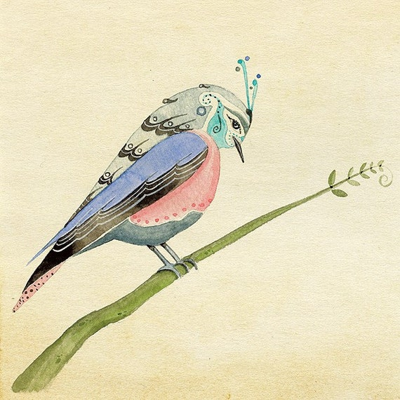 Aviary Study 3