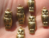 Brass Owl Charms HooTy Owls Charms Set of Six