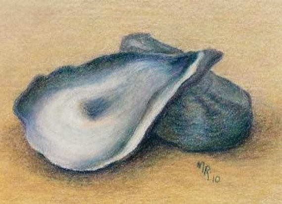 Oyster Shells - Original Colored Pencil ACEO