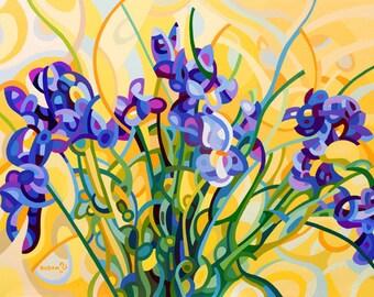 fine art floral print Irises yellow purple