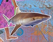"""Pop Culture Funny Saying. """"Live Every Day Like It's Shark Week."""" FOLK ART MAGNET. Discovery Channel. Snarky Silly Humor."""