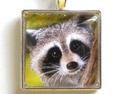 Raccoon Necklace, glass, silver, animal necklace, picture pendant, art pendant, woodland