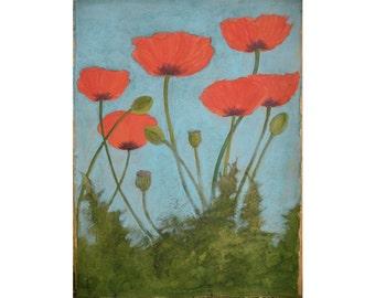 Original Watercolor Poppies 22X30