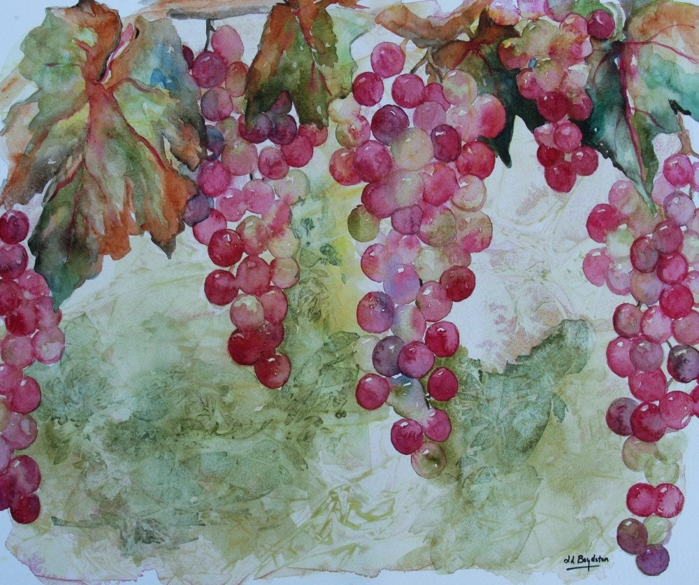 Original Watercolor Vitis Wine Grape Painting
