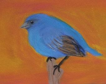 Indigo Bunting, pastel painting