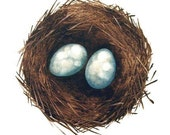 nest with eggs greeting card