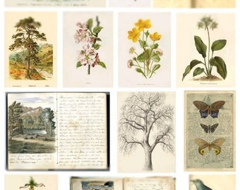 My Nature Journal - Digital Collage Sheet - Instant Download