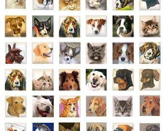 Dogs and Cats - 1x1 - Digital Collage Sheet - Instant Download