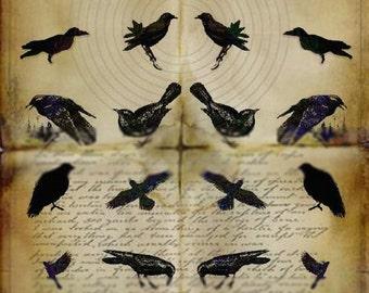Grunge Crows - Digital Collage Sheet - Instant Download