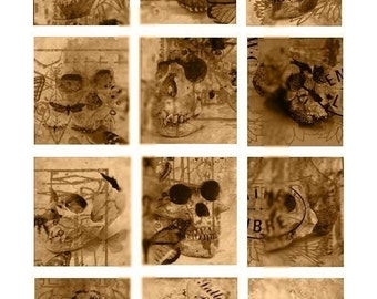 Altered Brown Skulls - 2x2 Inch - Digital Collage Sheet - Instant Download