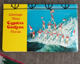 Human Pyramids Postcard Book