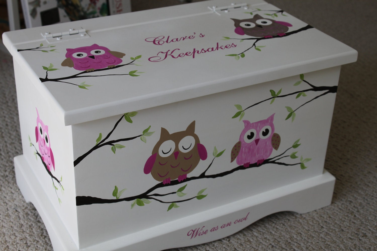 Keepsake Box Chest Baby Memory Box Personalized Pink Owls