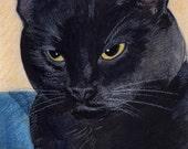 Onyx, a Black Cat in Watercolor   Custom Pet Portraits