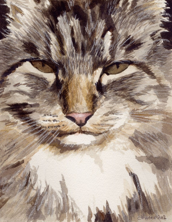 Troubles watercolor of a Maine Coon Cat... Custom Pet Portraits