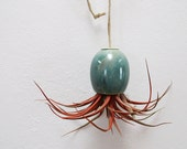 NEW COLOR - Hanging AirPlant Pod planter (tm) - Stunning Blue Green
