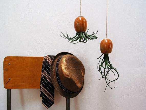 Hanging Air Plant Pod (tm) - Red Brown Gold