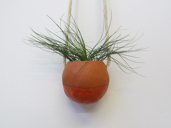 Terracotta hanging planter pot vase with coral glaze - perfect for air plant, succulent or cactus