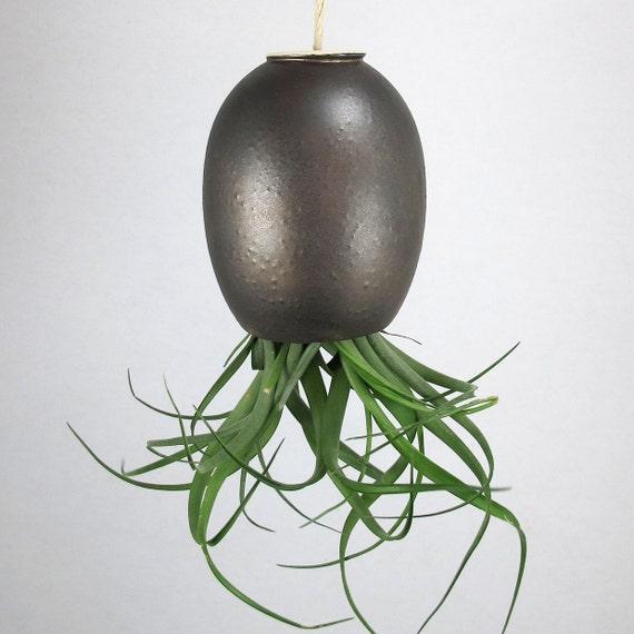 LARGE Black Gold Hanging AirPlant Pod (tm) contemporary ceramic planter vase