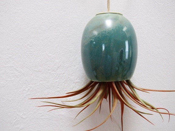LARGE Blue Green Ceramic Pottery Hanging Air Plant Pod (tm)