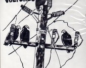 Turkey Vultures- Field Study - Original Illustration from Bird Brain Zine
