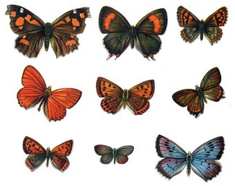 Vintage Styled Butterfly Vinyl Decals Set 2