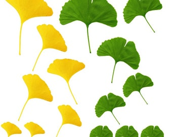 15 Ginko Leaves Vinyl Wall Decal Set