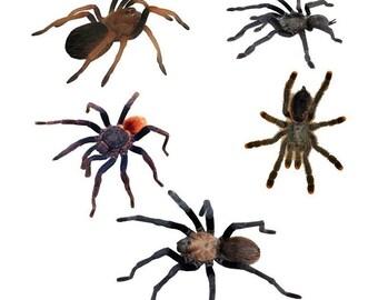 Creepy Crawly 5 Tarantula Spider Vinyl Decals