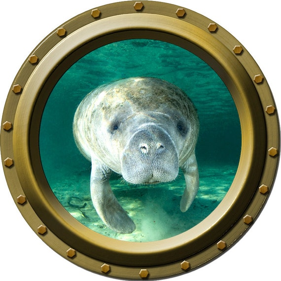 Watchful Manatee Porthole Vinyl Wall Decal