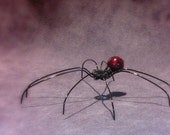 Black and Red Wire Spider