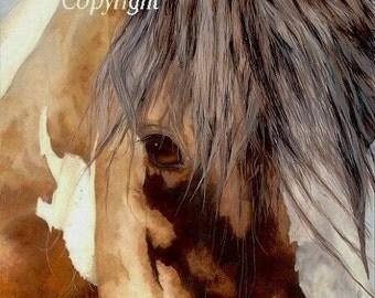 Horse Original Art Print Looking into the Kind Nature of the Horse Powerful Close Up