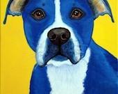 Fine Art Print 8x10 of Blue Pit Bull Terrier by Nesbitt- For Charity