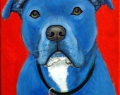 Blue Pit Bull Terrier Fine Art Print by Carol Iyer