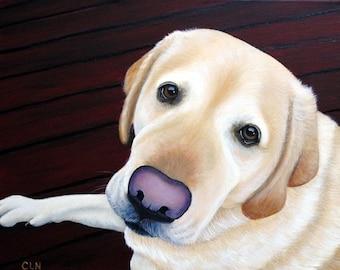 Yellow Lab Fine Art Print by Carol Iyer , Labrador Retriever Art