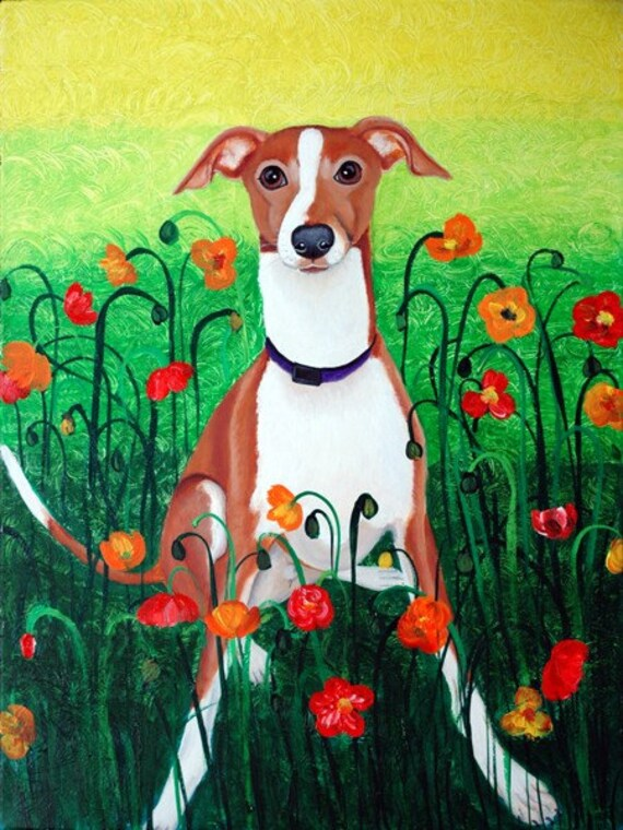 Wynston in Poppies, Italian Greyhound Dog Art, Fine Art Prints by Carol Iyer