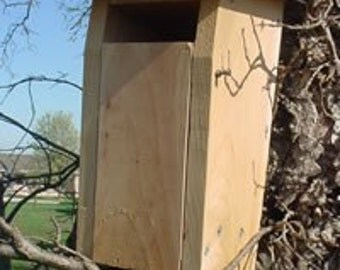 Bluebird House, slotted