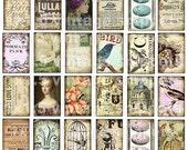 DIGITAL COLLAGE SHEET ViNTaGe SNiPPeTs 1 x 1.5 WHiMSiCaL BiRDs FlueR De LiS postcards Paper supplies domino pendants sh02