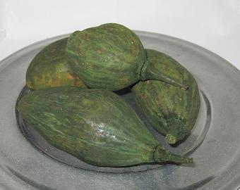 Green  Baobab Pods -Bowl Filler-Home Decor -Basket Filler-Vase Filler