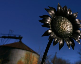 2 ft Forged Metal Sunflower Sculpture- Blacksmith made metal sculpture, flower sculpture, outdoor sculpture, yard sculpture, patio sculpture