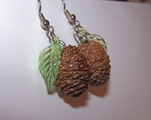 Real Pinecone Earrings