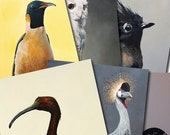 Set of 6 Fine Art Bird GREETING CARDS