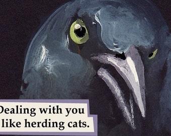 Herding Cats - bird MAGNET