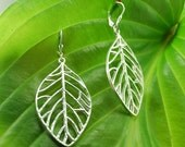 Intricate leaf earrings
