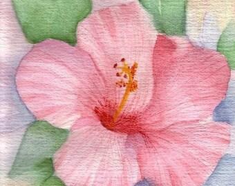 Pink Hibiscus- Notecard Prints-8