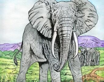 Glory Elephant Notecards- 6 set