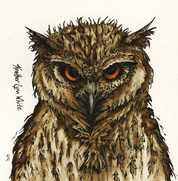 Owl 5x5 print