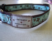 SALE- Oh So Stylish Brown and Turquoise Dog Collar with Flowers Small