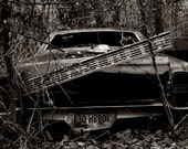 Lonely Car, signed 5x7 acrhival print, Corey Ramsey, EBSQ
