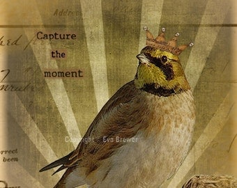 Digital collage original inspirational nest print sunshine capture the moment supplies vintage ephemera crowns birds