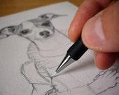 Custom Pencil Pet Portrait